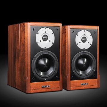 PAIYON P9 HIFI bookshelf speakers audiophile MOREL TICW 638+ST1108 unit