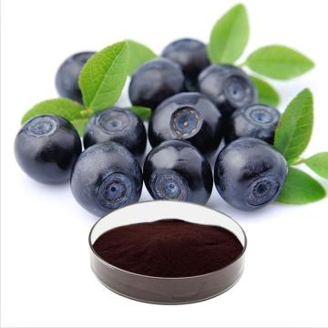 Organic Bilberry Fruit Powder