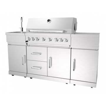 Six Burner Gas Barbecue Grill With Rear Burner
