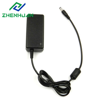 12W 24V 500mA DC naar AC stroomadapter