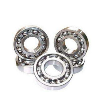 Single Row Deep Groove Ball Bearing (6020)