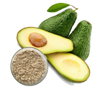 Pure Dried Avocado Fruit Extract Juice Powder