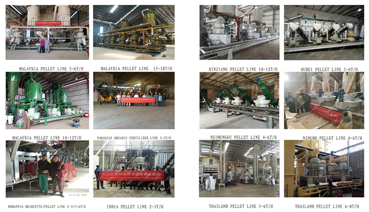 Wood Pellet Machine Production Plant