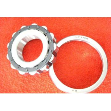 Double Row Cylindrical Roller Bearing (NN3072K/W33)