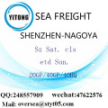 Shenzhen Port Sea Freight Shipping To Nagoya