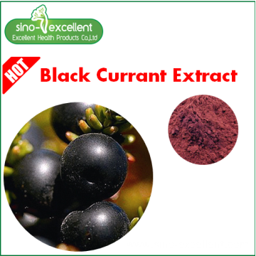 Natural Ribes Nigrum Extract