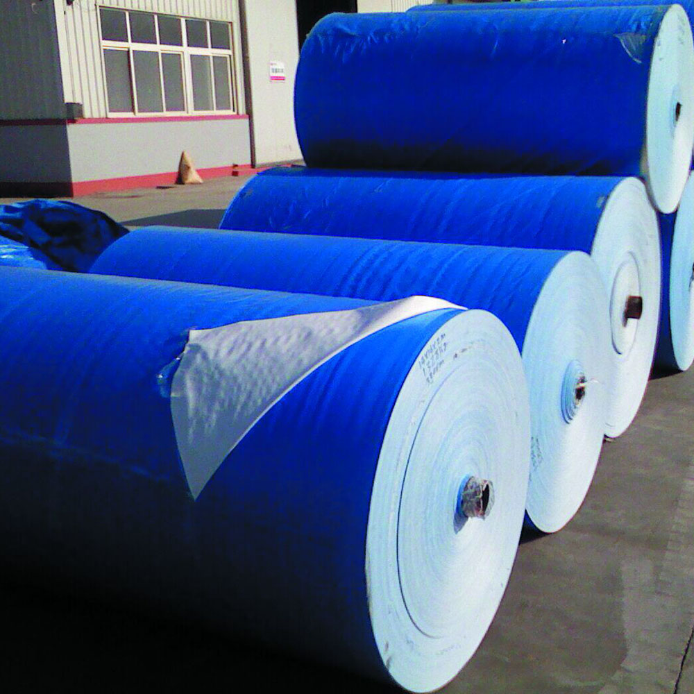 Blue White Tarpaulin in Roll