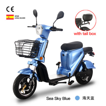 Large Lithium Battery Capacity Electric Bike Bicycle