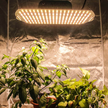Samsung Quantum Board 180w LED Indoor Grow Lamp