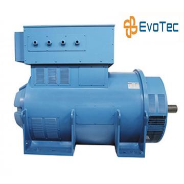 6300V Electric Regulator Generator