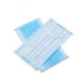 Disposable 3-Ply Face Mask with Earloop