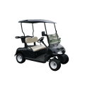 2 person gas power golf carts for sale