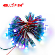 Hello Fish 12mm WS2811 Full Color Pixel Module DC5V IP68 Waterproof Point Lights For Advertisement 50pcs/ lot Free Shipping