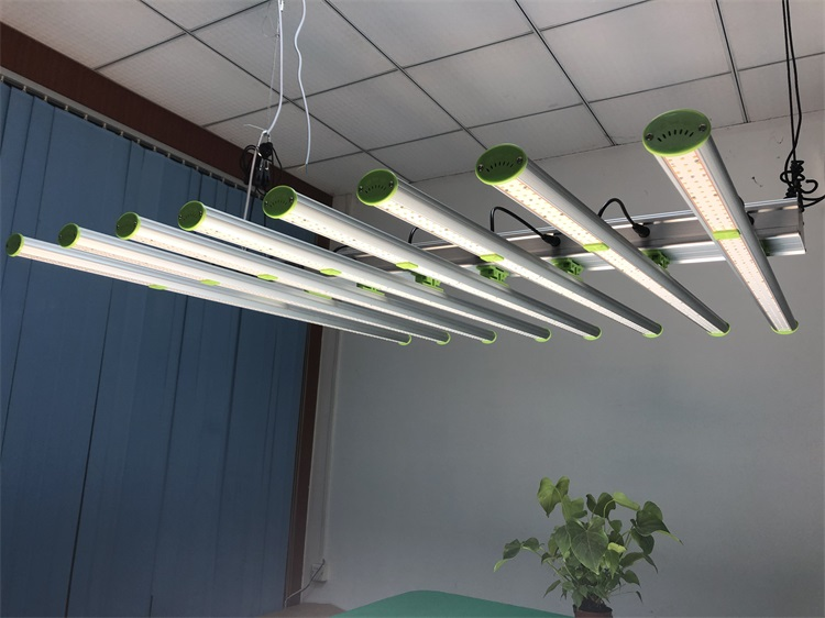 600w led grow lamps