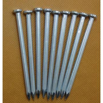 Factory galvanized and polished concrete nails for building