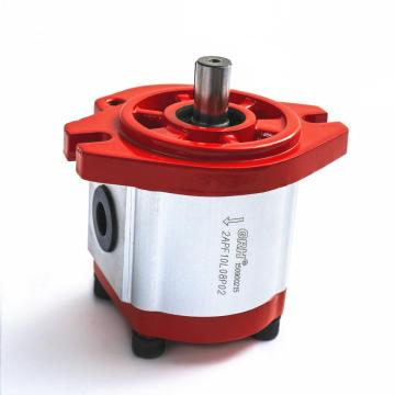 hydraulic external gear pump