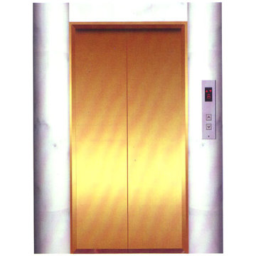 Center Opening Landing Door , Elevator Decoration