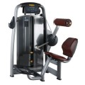 Popular Gym Fitness Equipment Back Extension