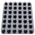 Top Quality HDPE Dimple Drainage Board for Basement