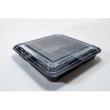 Compartment Disposable Plastic Rectangular Lunch Box