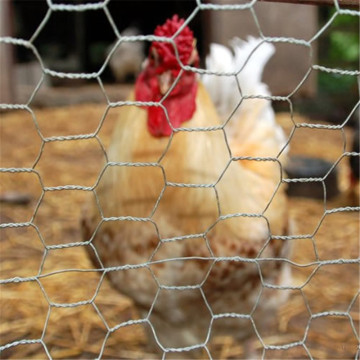 hexagonal wire chicken cage for sale