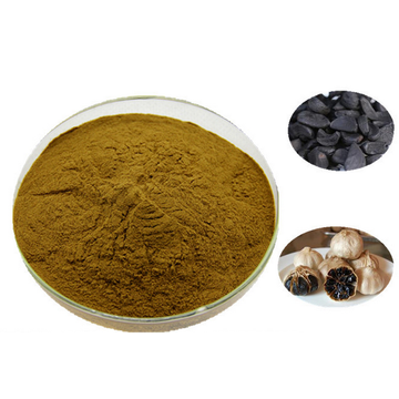 Flash Sale the Healthy Black Garlic powder