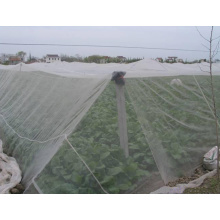 Anti insect net good factory