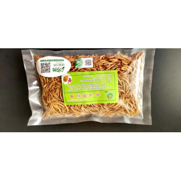 High Protein Mealworm for Export
