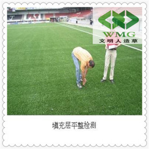 Outdoor Synthetic Grass Carpet
