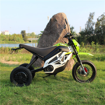 75km/h Battery Trike Bike 1000w Long Distance