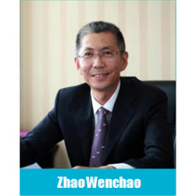 China Lead Acid Battery Professional Committee Expert