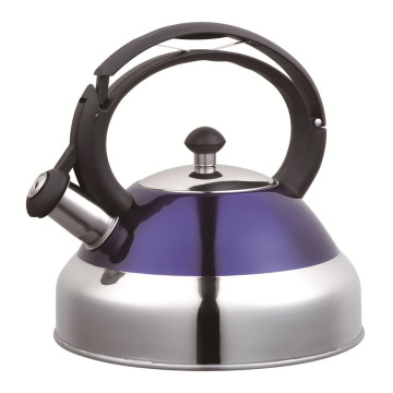 Wide Mouth of Painting Purple Whistling Kettle
