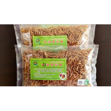 Mealworm rich in high quality protein