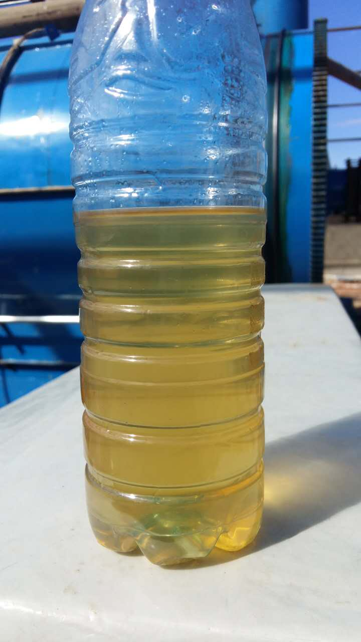 oil sample