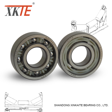 Rubber Sealed Nylon Cage Ball Bearing 6204