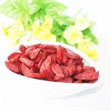CHINESE GOJI BERRY GOOD QUALITY LOW PRICE