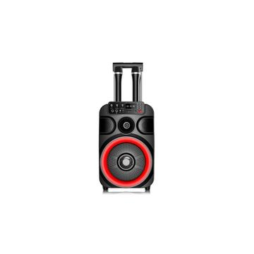 New Trolley Speaker With Wireless Mic