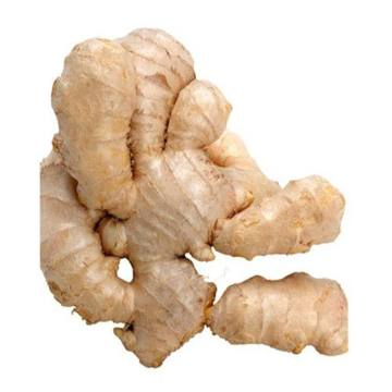 Selected Fresh Air Dry Ginger