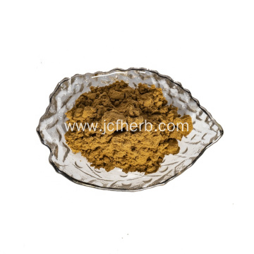Angelica Extract Powder Dong Quai Powder