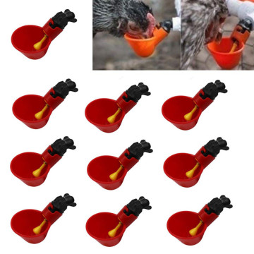 10 Pcs Feed Automatic Bird Coop Poultry Chicken Fowl Drinker Water Drinking Cup For Chicken Feeder Cook Bowl Dropshipping#D