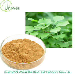 Gingko Biloba Leaf Extract Flavone 24%/6% Lactones Powder