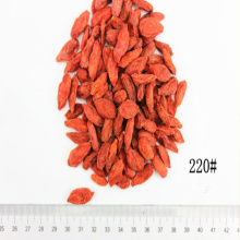 superfood Organic 220Grains/50G Goji Berry