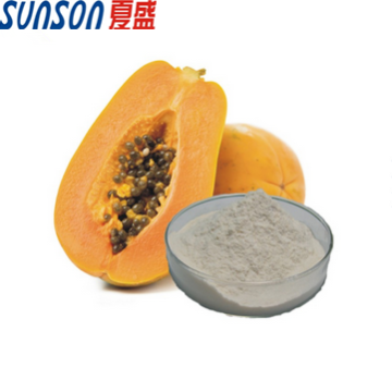 Food grade enzyme papain powder from papaya