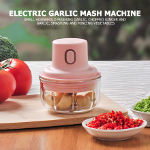 250ml Stainless Steel Glass Meat Juicer Fruit Vegetable Potatoes Grater Garlic Masher Food Processing Machine Kitchen Tools