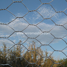 Hot dipped Galvanized Chicken Wire Mesh