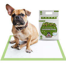 Earth-Friendly Puppy Pee Pad