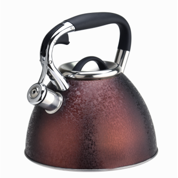 Popular stovetop stainless steel stovetop coffee tea kettle