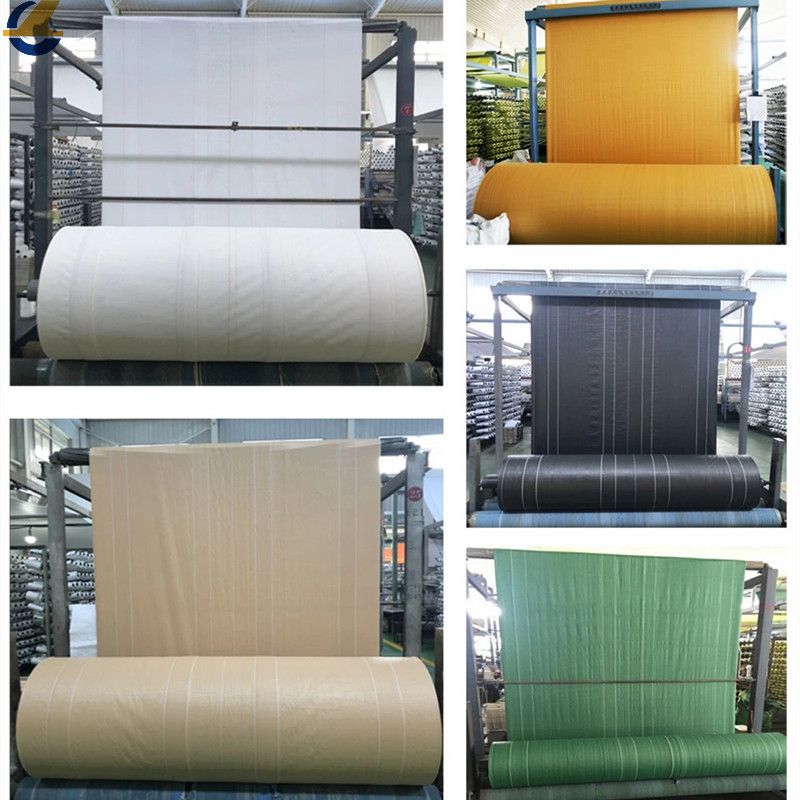 Multi-color PE fabrics
