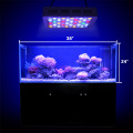 Dimmable Coral Reef LED Aquarium Malamalama
