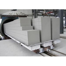 equipment for autoclaved aerated concrete block production